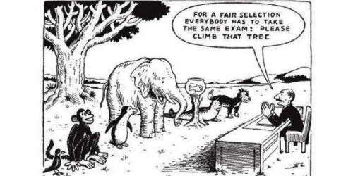 Traditional Model of Education vs Montessori, U of Virginia Study